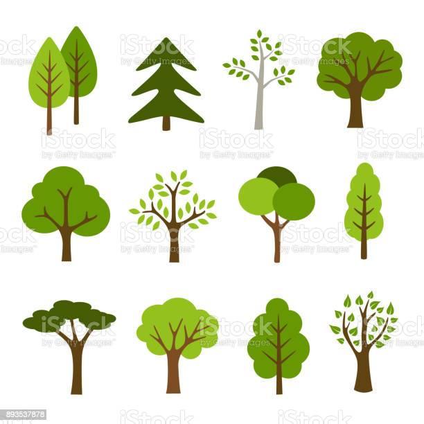 Trees collection vector id893537878?b=1&k=6&m=893537878&s=612x612&h=zdyr97nj7t5pdbwh3ky7cyjd7j3dtxwbuswlyejjxcy=