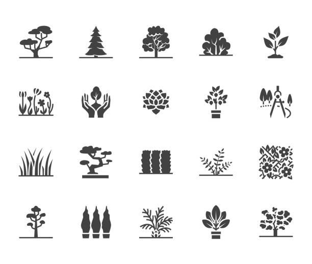ilustraciones, imágenes clip art, dibujos animados e iconos de stock de los iconos de glifo plana de árboles establecido. paisaje de plantas, diseño, abeto, suculentas, arbustos de privacidad, césped, flores vector ilustraciones. indicaciones para la tienda de jardín. pixel del macizo de la silueta perfecta de 64 x 64 - sólido