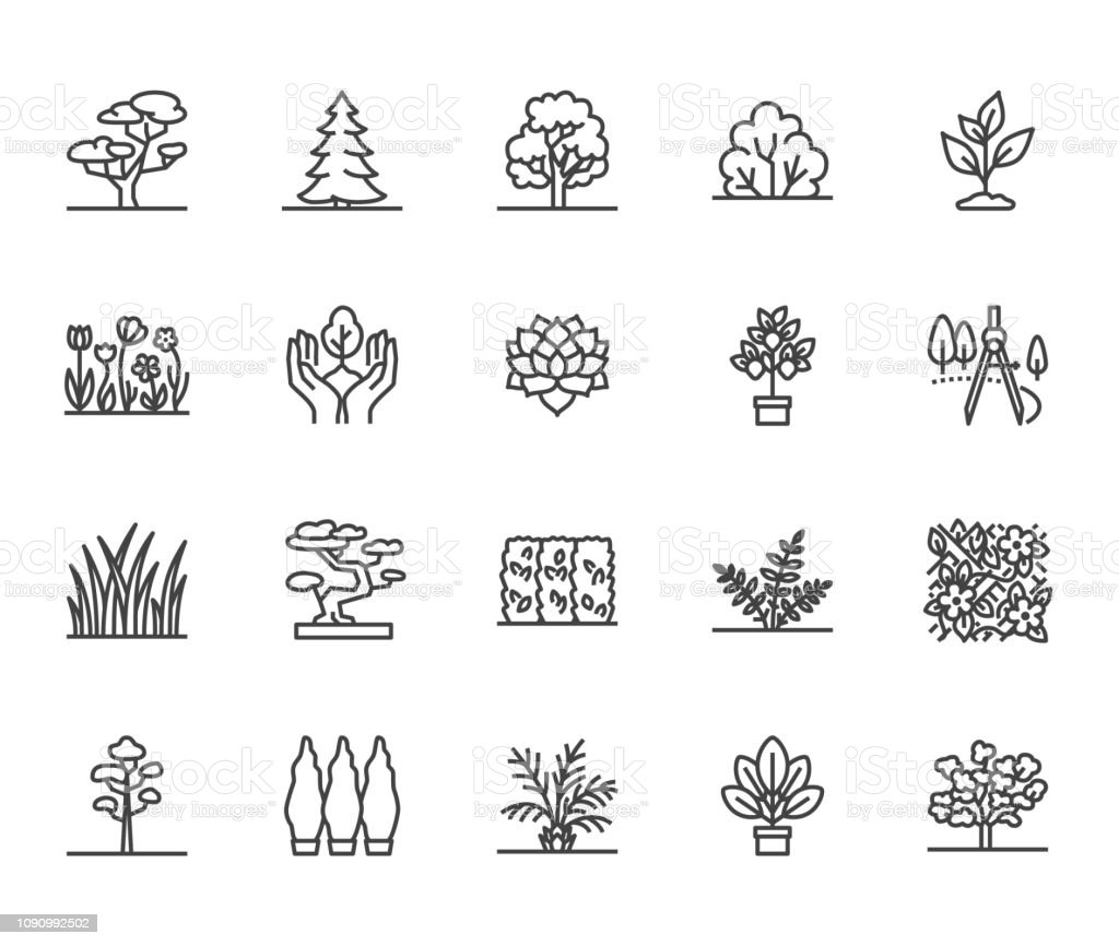 Trees flat line icons set. Plants, landscape design, fir tree, succulent, privacy shrub, lawn grass, flowers vector illustrations. Thin signs for garden store. Pixel perfect 64x64. Editable Strokes - Grafika wektorowa royalty-free (Bez ludzi)