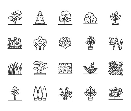 Trees flat line icons set. Plants, landscape design, fir tree, succulent, privacy shrub, lawn grass, flowers vector illustrations. Thin signs for garden store. Pixel perfect 64x64. Editable Strokes clipart