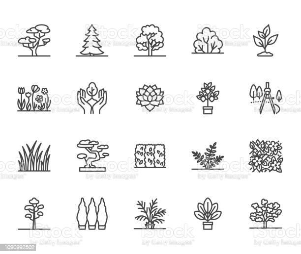 Trees flat line icons set plants landscape design fir tree succulent vector id1090992502?b=1&k=6&m=1090992502&s=612x612&h=udf3nqbdw2magk1qoj2p4wg4 5eelqzyj 3to8kwy64=