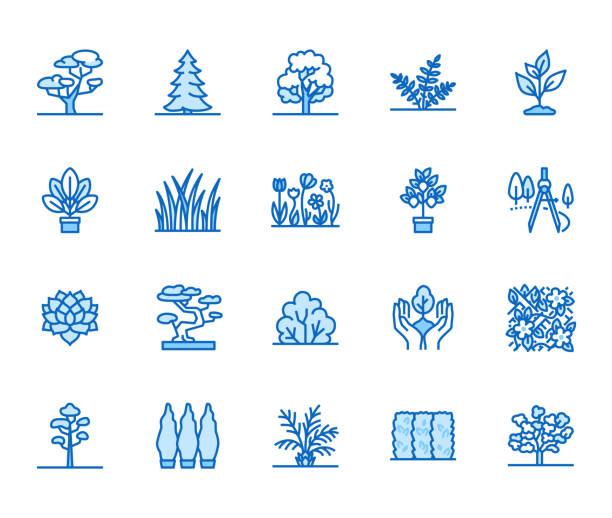 bildbanksillustrationer, clip art samt tecknat material och ikoner med träd platt linje ikoner anger. växter, landskap design, fir tree, saftiga, sekretess buske, gräsmatta gräs, blommor vektor illustrationer. tunn skyltar för trädgård butiken. pixel perfekt 64 x 64. redigerbara stroke - perenn