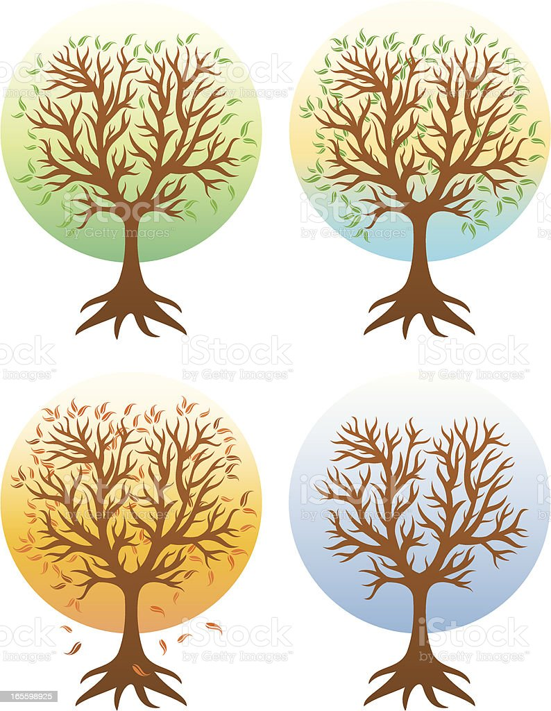 Trees for all seasons royalty-free trees for all seasons stock vector art & more images of autumn