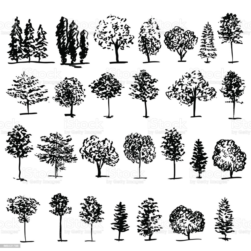 Trees graphic hand drawn vector engraving doodle sketch isolated on white background, vintage style, template for design pattern, collection of brush, printing, elements package eco product vector art illustration