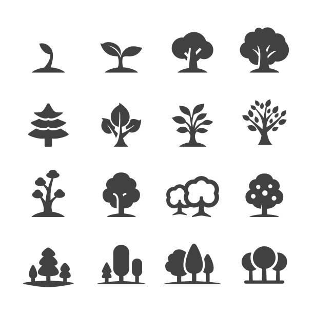 bildbanksillustrationer, clip art samt tecknat material och ikoner med träd ikoner - acme-serien - forest
