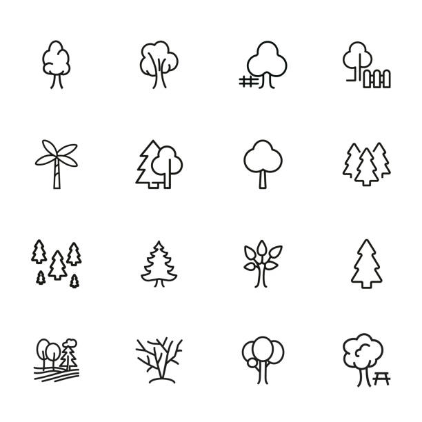 Trees line icon set Trees line icon set. Fir tree, forest, palm. Nature concept. Can be used for topics like park, country, plant trees stock illustrations