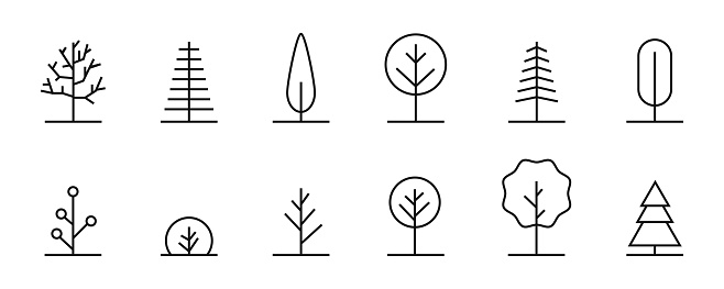 Trees linear icons. Vector thin line tree collection.