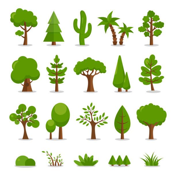 ilustraciones, imágenes clip art, dibujos animados e iconos de stock de conjunto de árboles - ilustración de dibujos animados vectoriales - árbol
