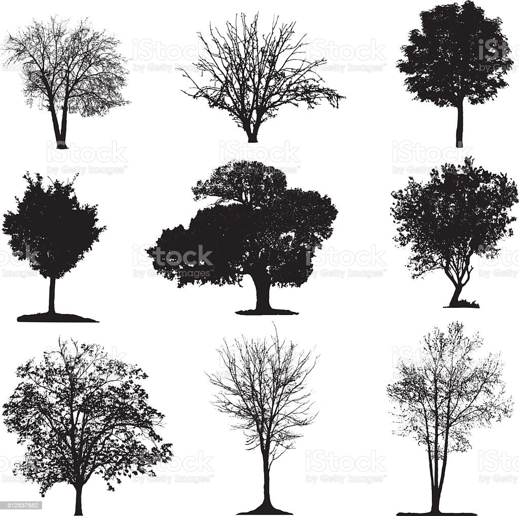 Vector Illustration Tree: Trees Silhouette Collection Stock Vector Art & More Images