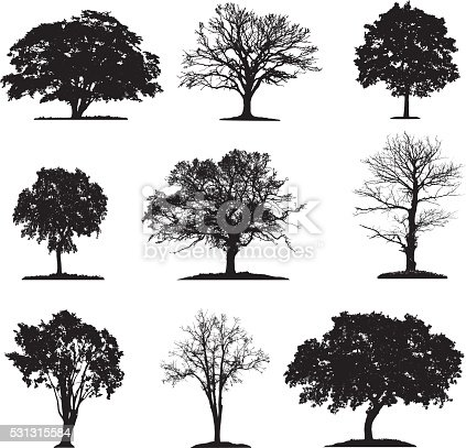 Trees silhouette collection in different layers