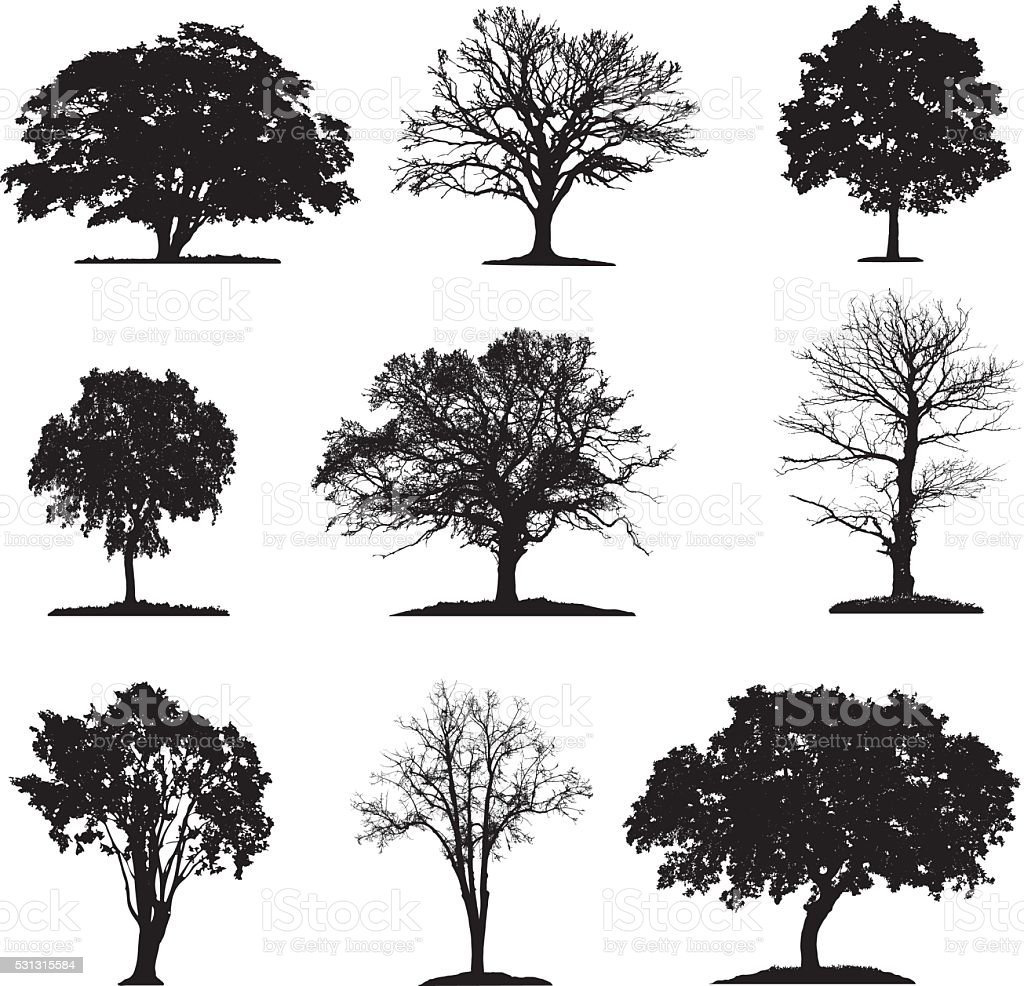 Trees silhouette collection vector art illustration
