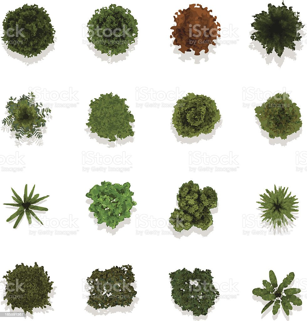 Trees top view for landscape vector illustration vector art illustration