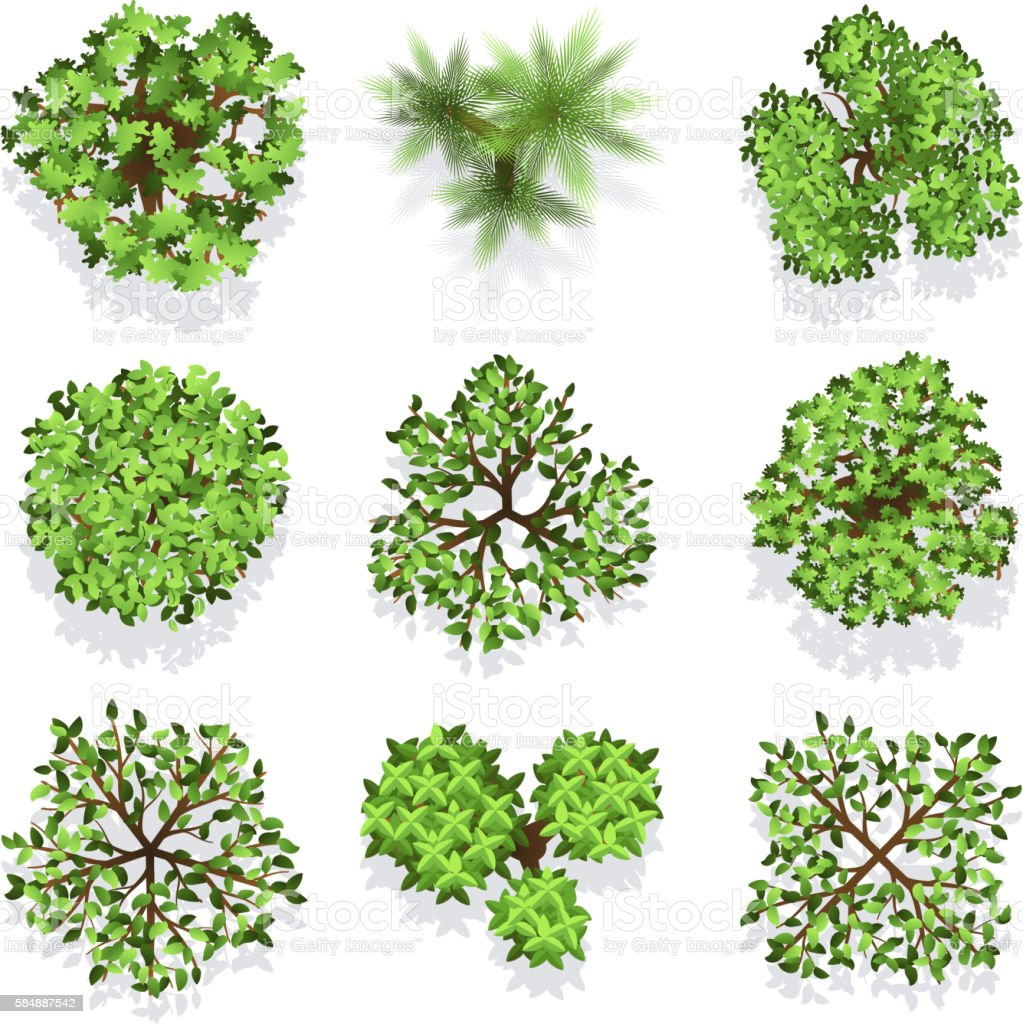 Trees top view vector set for landscape design and map vector art illustration