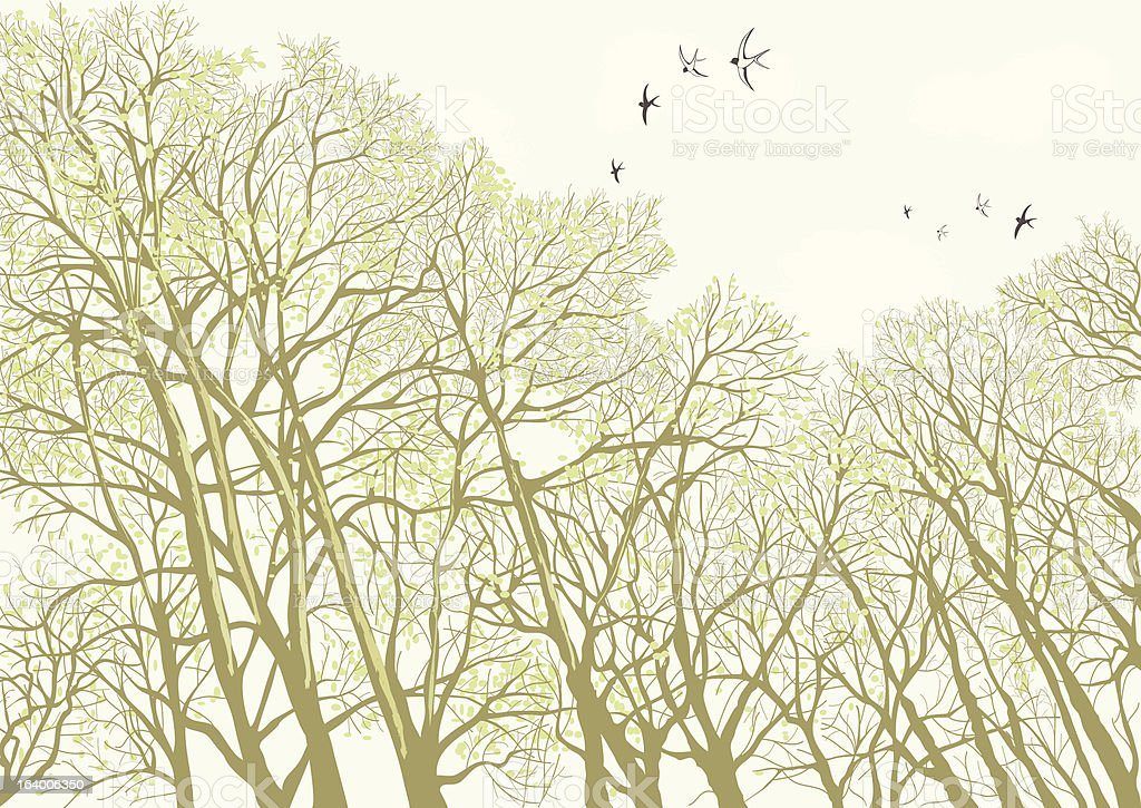 Trees royalty-free trees stock vector art & more images of abstract
