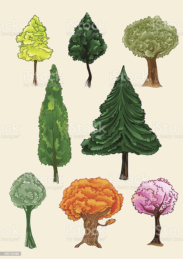 Trees royalty-free stock vector art