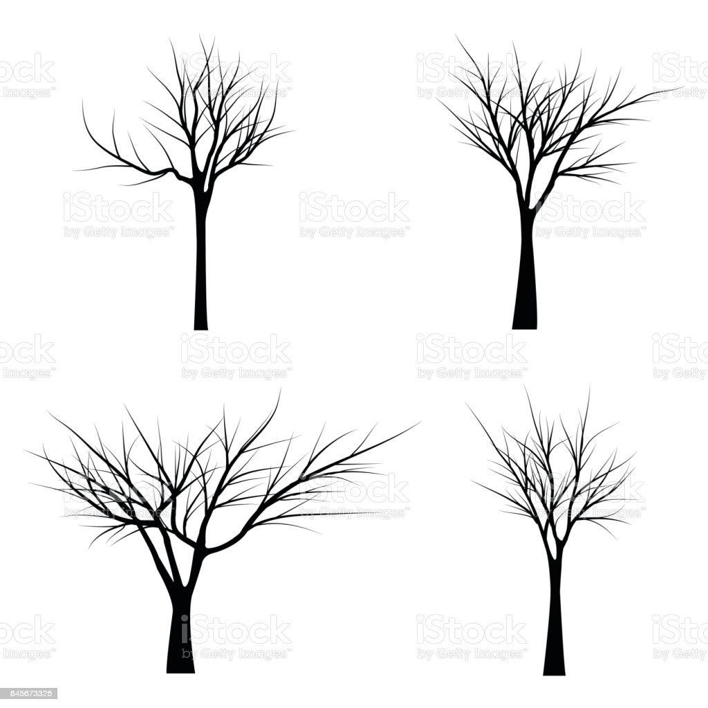 Trees with dead branches vector art illustration