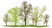 Trees without leaves. Spring silhouette vector