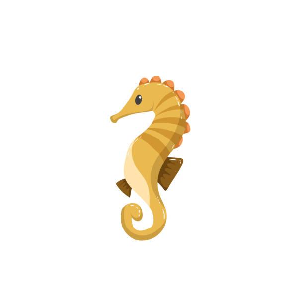 Trendy cartoon sea horse character. Kid education flat design. Vector icon. Trendy cartoon sea horse character. Kid education flat design. Vector icon. EPS10 + JPEG preview. sea horse stock illustrations