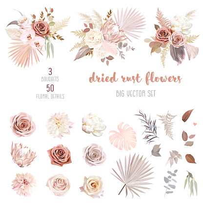Trendy dried palm leaves, blush pink and rust rose, pale protea