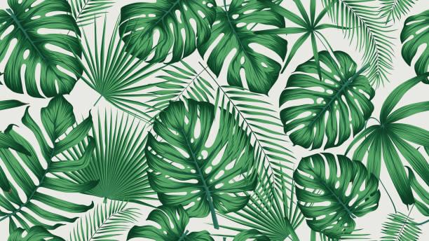 ilustrações, clipart, desenhos animados e ícones de na moda sem costura padrão tropical com exóticas folhas e plantas selva - monstera