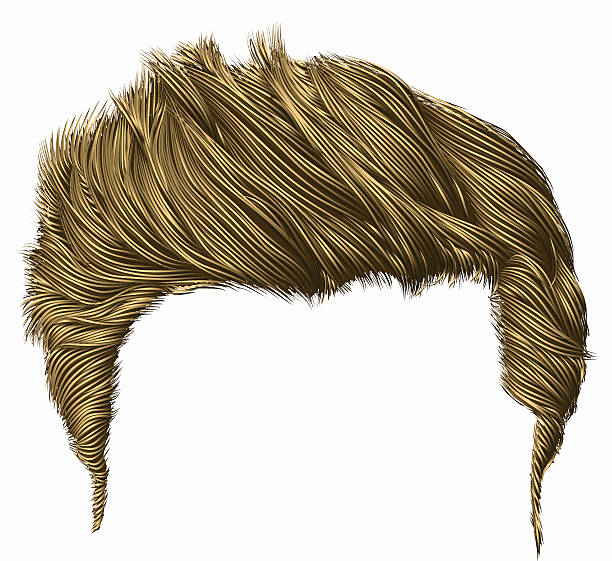 Royalty Free Wig Clip Art, Vector Images & Illustrations ...