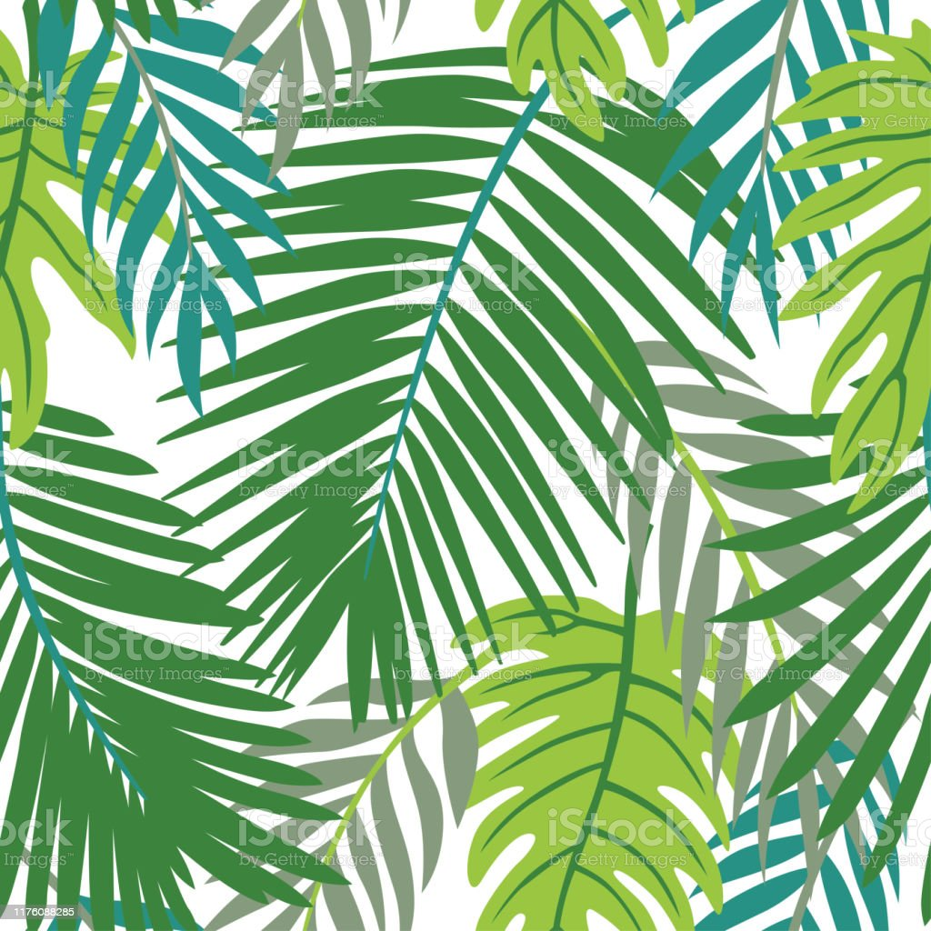 Trendy Summer Tropical Leaves Vector Design Floral Seamless Pattern Doodle Vector Background With Leaves Colorful Tropical Illustration Stock Illustration Download Image Now Istock Download the free graphic resources in the form of png, eps, ai or psd. trendy summer tropical leaves vector design floral seamless pattern doodle vector background with leaves colorful tropical illustration stock illustration download image now istock