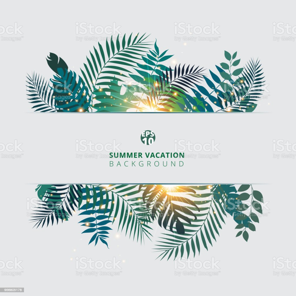 Trendy summer tropical with exotic palm leaves or plants and lighting effect on white background.