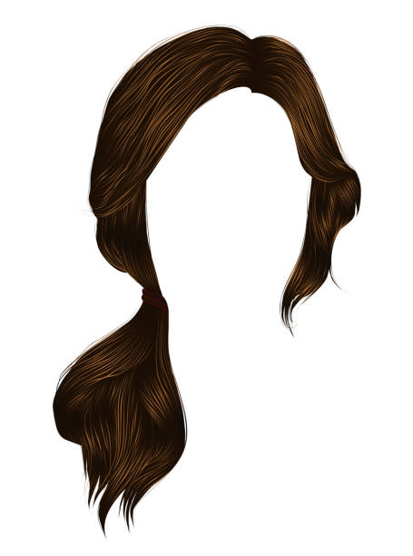 trendy women hairs brunette brown colour .tail .  fashion beauty style . - brown hair stock illustrations