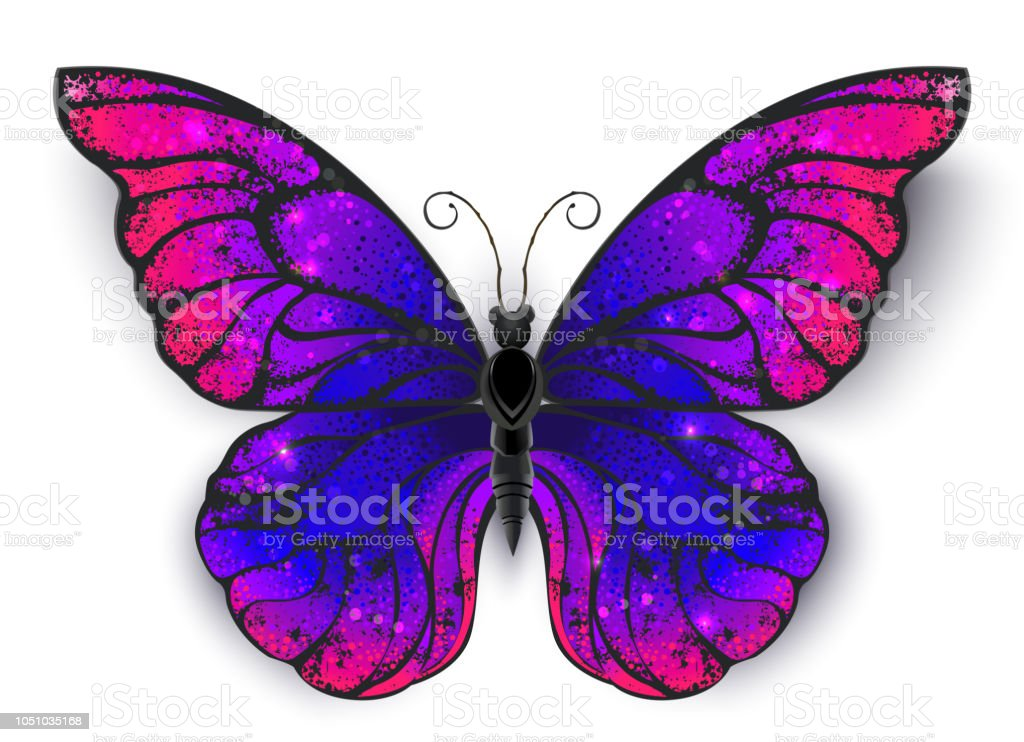 Tricolored papillon - Illustration vectorielle
