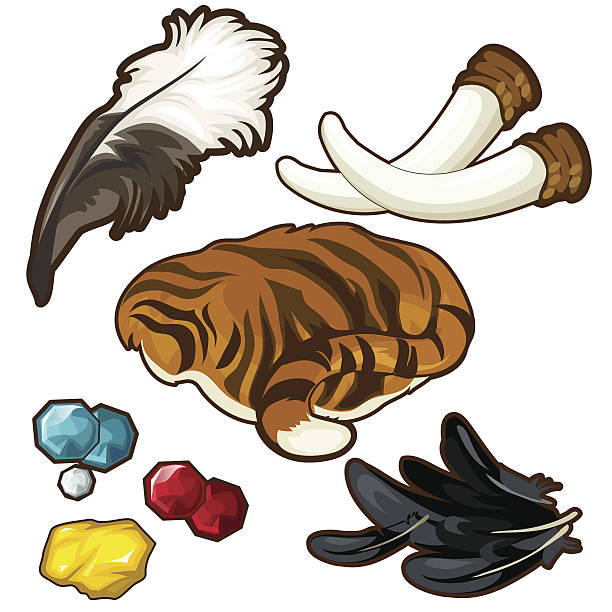 Trophies of hunter and few gems. Vector Trophies of hunter and few gems. Vector set on white background poaching animal welfare stock illustrations