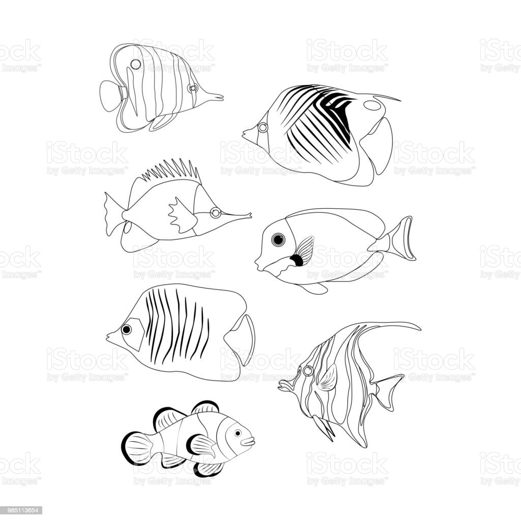 Free Coral Reef Coloring Pages, Download Free Clip Art, Free Clip ... | 1024x1024