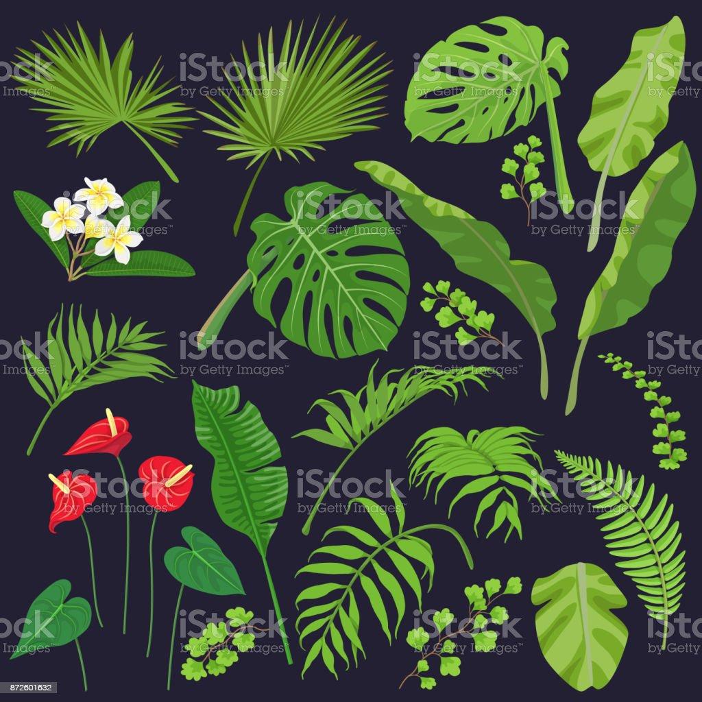 Flores e folhas tropicais - ilustração de arte em vetor