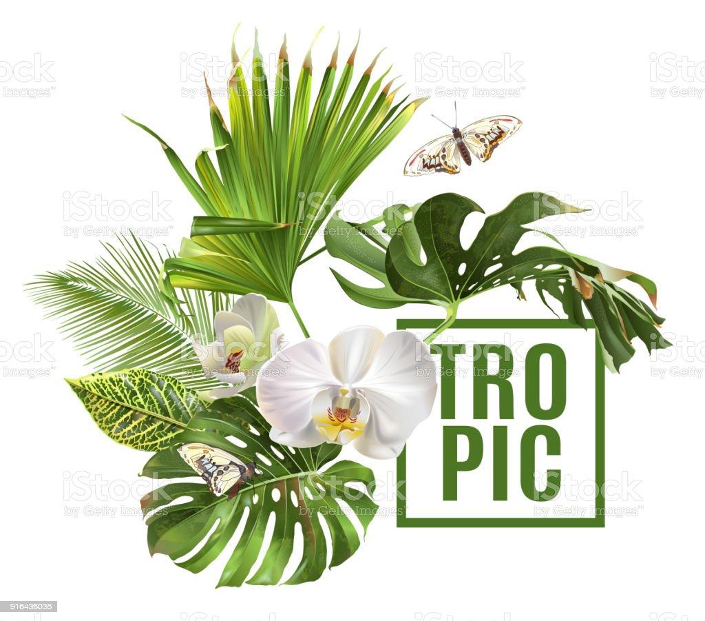 Bandera de plantas tropicales - ilustración de arte vectorial