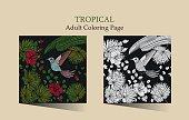 Tropic vector illustration