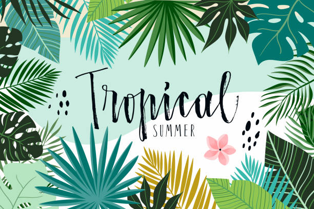 Tropical abstract background Tropical abstract background with hand drawn leaves tropical pattern stock illustrations