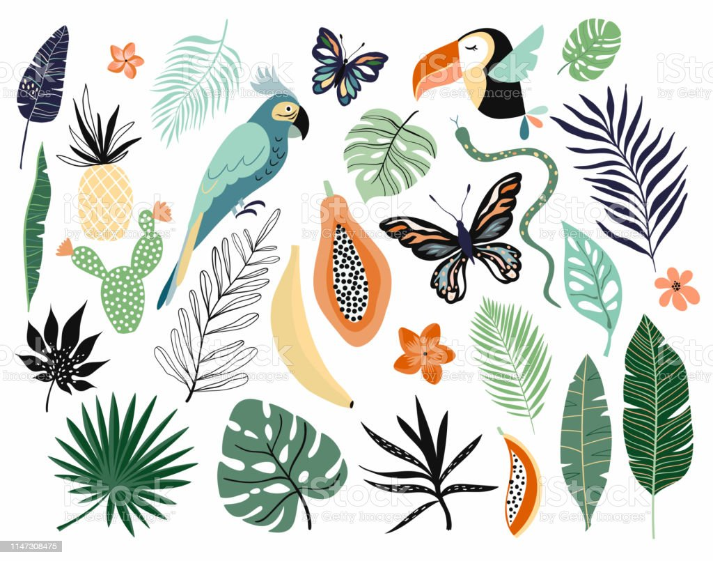 Tropical abstract elements collection with different items isolated...