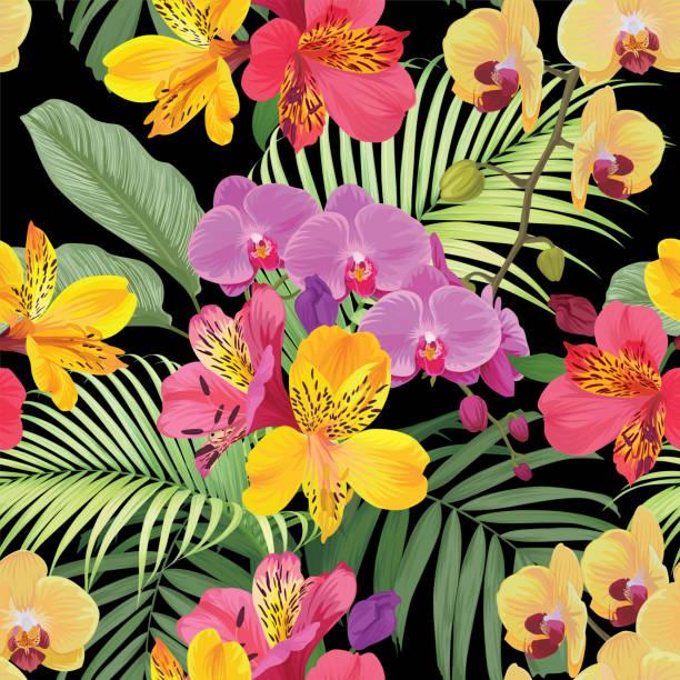 tropischen alstroemeria lily und orchidee blumen musterdesign mit blatt auf schwarzem hintergrund. - inkalilie stock-grafiken, -clipart, -cartoons und -symbole