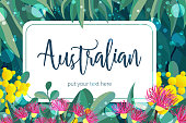 Tropical australian nature background. Vector illustration of eucalyptus leaves and flowers, blooming gum on dark backdrop. Horizontal design template for cards, invitations, banners, flyers