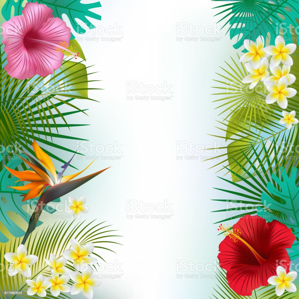 Tropical Background Flowers Exotic Leaves Palm Hibiscus ...