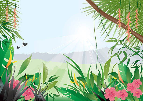 Tropische Hintergrund – Vektorgrafik