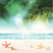istock Tropical Background 486206875