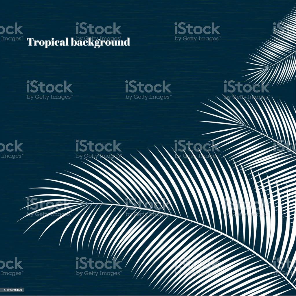 Tropical background. White palm leaves. Exotic plants. Silhouette. Vector illustration. Border. vector art illustration