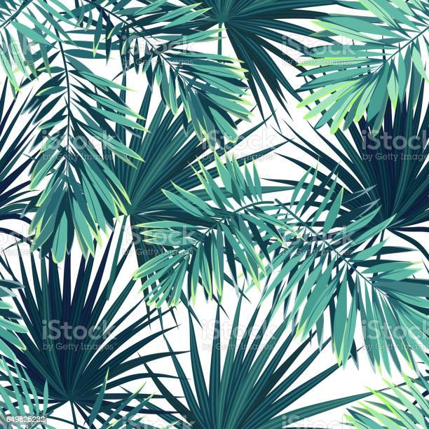 Tropical background with jungle plants seamless vector tropical with vector id649825232?b=1&k=6&m=649825232&s=612x612&h=56uixf5ghetbcrxrl zlngwb9ezgxwmzp6wkvvhpj5o=