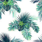 Tropical background with jungle plants. Seamless vector tropical pattern with green phoenix palm leaves
