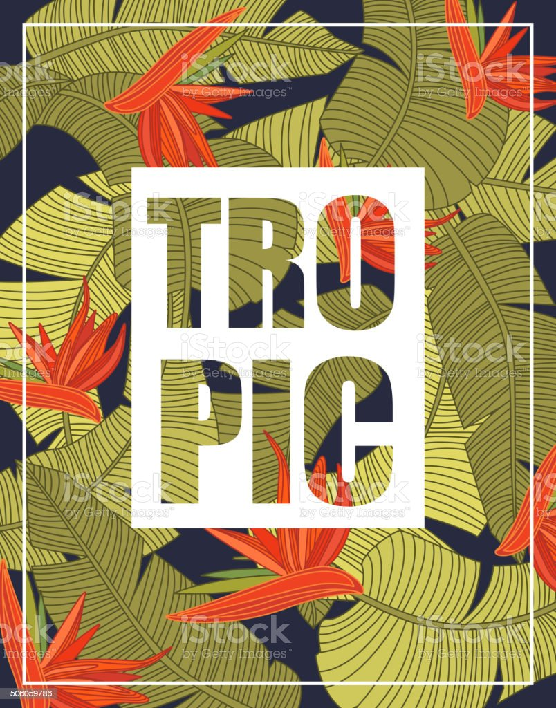 Tropical Background with Lettering vector art illustration