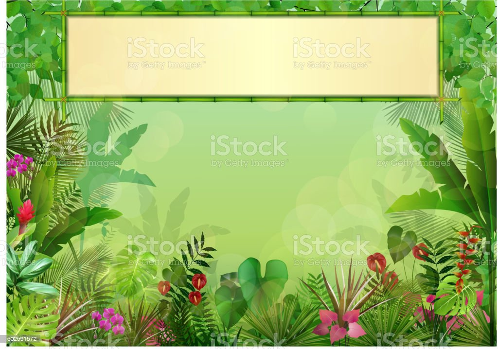 Tropical background with rectangle floral frame in concept bamboo vector art illustration