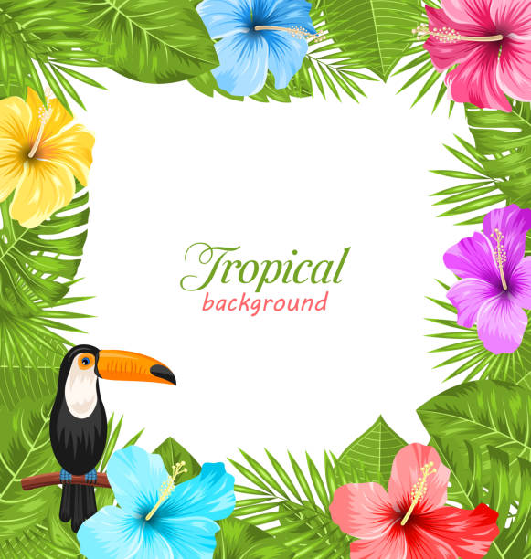Best Hawaiian Border Illustrations Royalty Free Vector