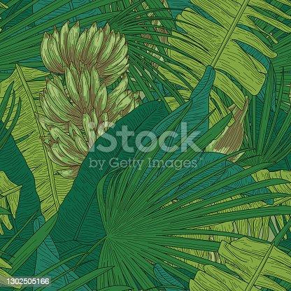 istock Tropical Banana Leaf Seamless Pattern 1302505166