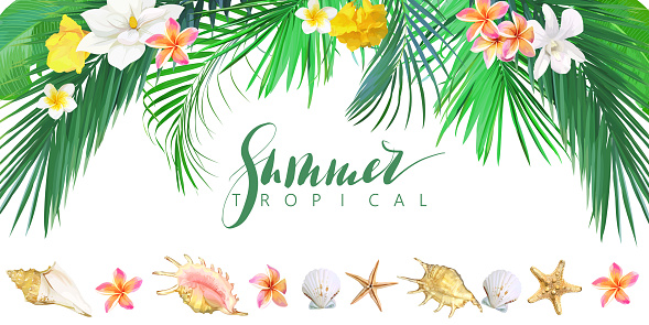 Tropical banner with flowers and seashells. Vector template.