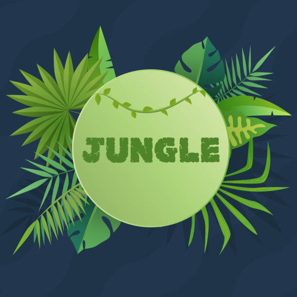tropical banner with green palm leaves. green jungle seasonal poster template for print or web. vector illustration modern design. - jungle stock illustrations
